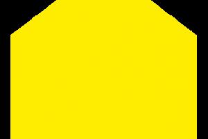 icon Kopie